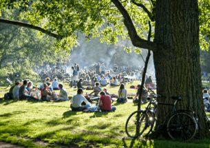 tips-voor-geslaagde-picknick